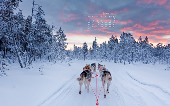 january 2011 calendar wallpaper