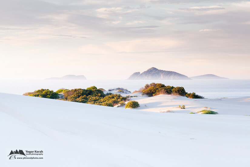 Bennetts Beach Dunes, NSW, Australia