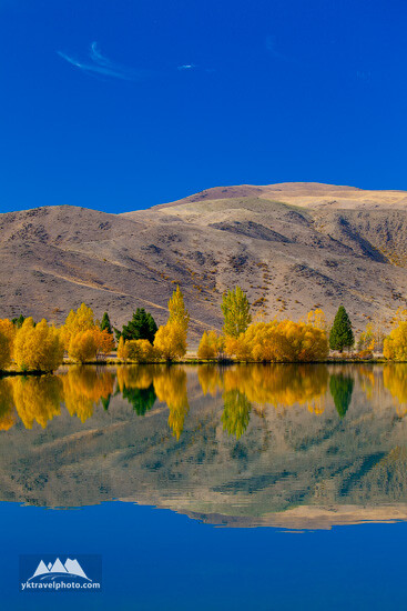 Wairepo Arm Lake, South Island, New Zealand