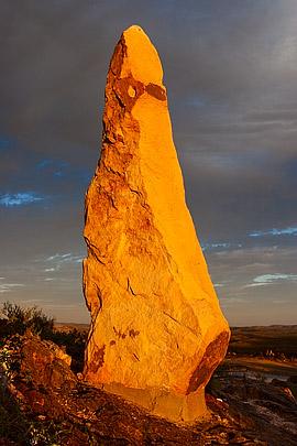 Thomasina, The Broken Hill Sculpture Symposium