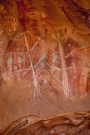 Arkaroo Rock, Flinders Ranges National Park