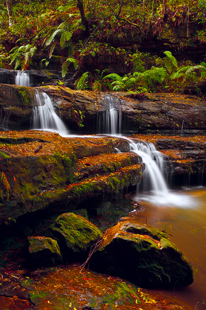 Terrace Falls, Blue Mountains National Park, NSW, Australia