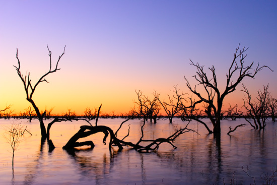 The Lake Pamamaroo,NSW, Australia