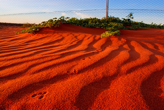 Cameron Corner, QLD, NSW, SA, Australia